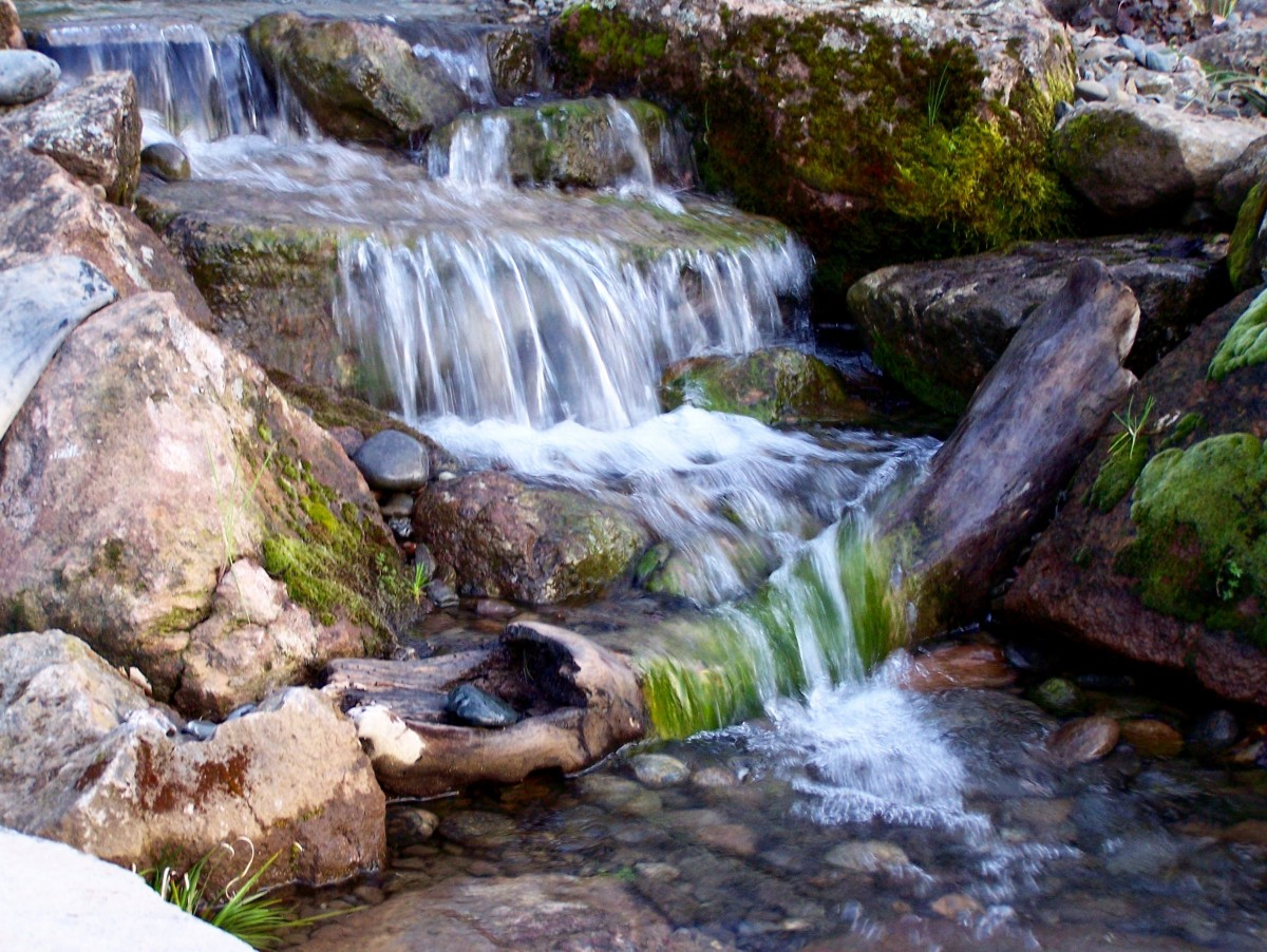 String Algae, Waterfall, Pondless Waterfall