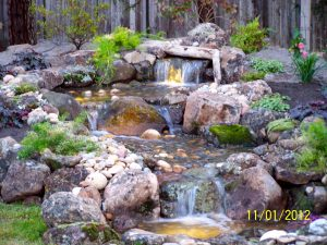 Pondless Waterfall are Mosquito Traps...