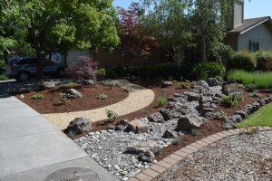 Front Yard Lawn Conversion to Low Maintenance Landscape