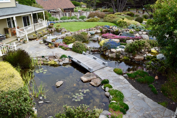 Pond contractors near me waterfall contractors in sonoma for Pond companies near me