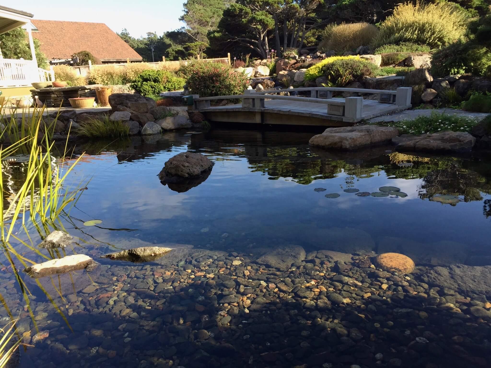 Pond Contractors Near Me