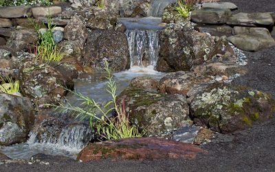 Add Life to Your Interior with Indoor Water Features