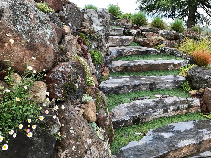 The Best Landscaping Companies in Sonoma County and Santa Rosa