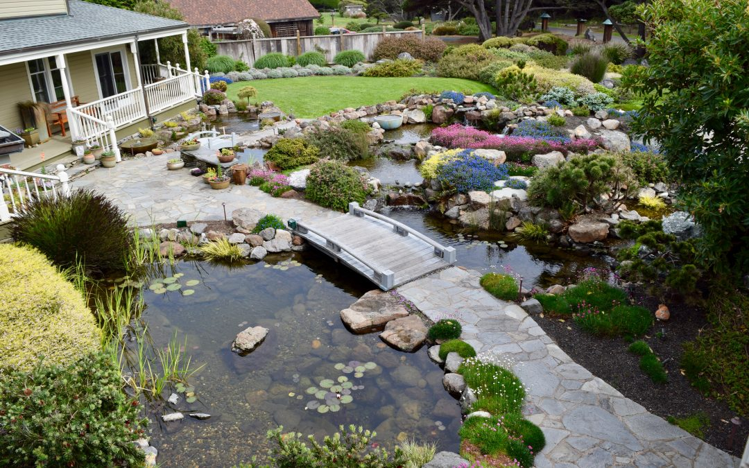 How to Choose a Water Feature Contractor