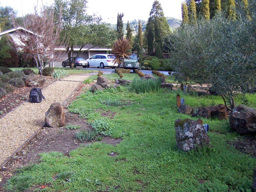 landscape contractors in Santa Rosa