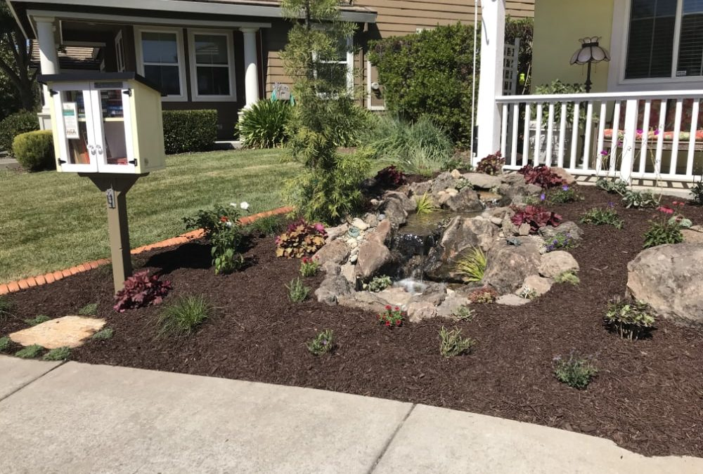 How to Landscape Design Your Backyard?