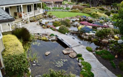 How Do I Prepare My Landscape for Winter?