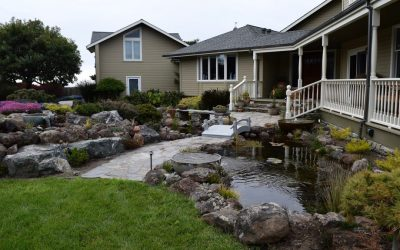 4 Things To Think About When Planning Your Landscape Design