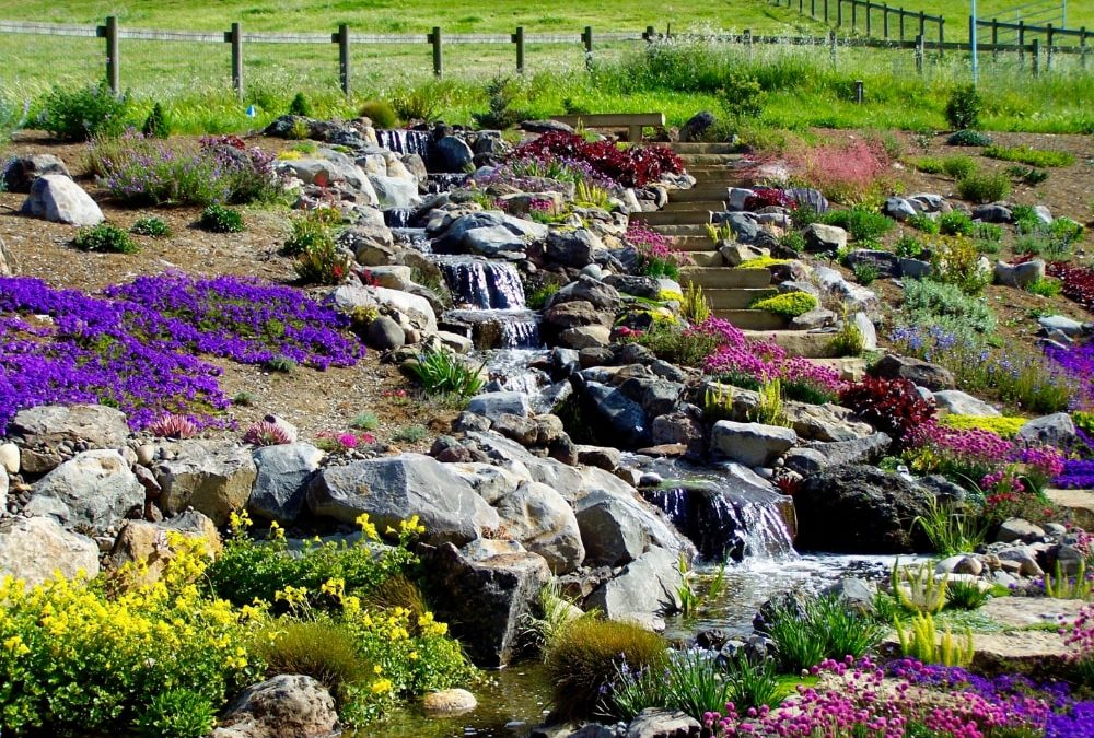 Water Feature Contractors Near Me
