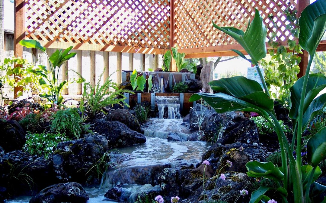 Five Stylish Options for Backyard Water Features