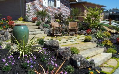 Low-Water Landscaping Ideas for a Beautiful, Sustainable Yard