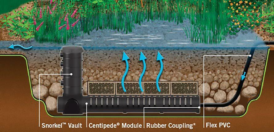 Constructed Wetland Filter (Bog Filter) – The Ultimate in Pond Filtration