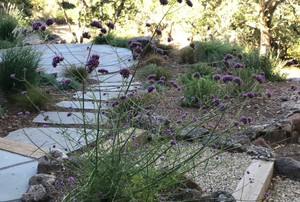 3 Ways to Create a Sustainable Landscape